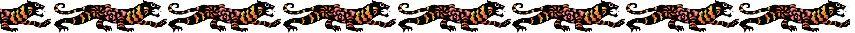 tygrys nowy